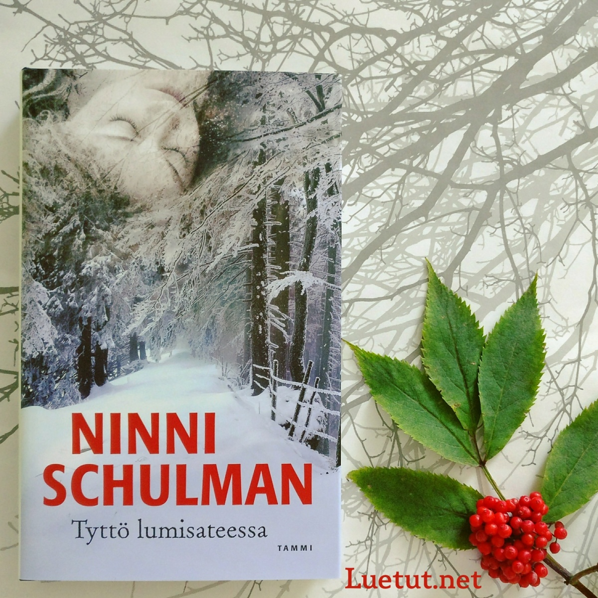 Ninni Schulman: Tyttö lumisateessa
