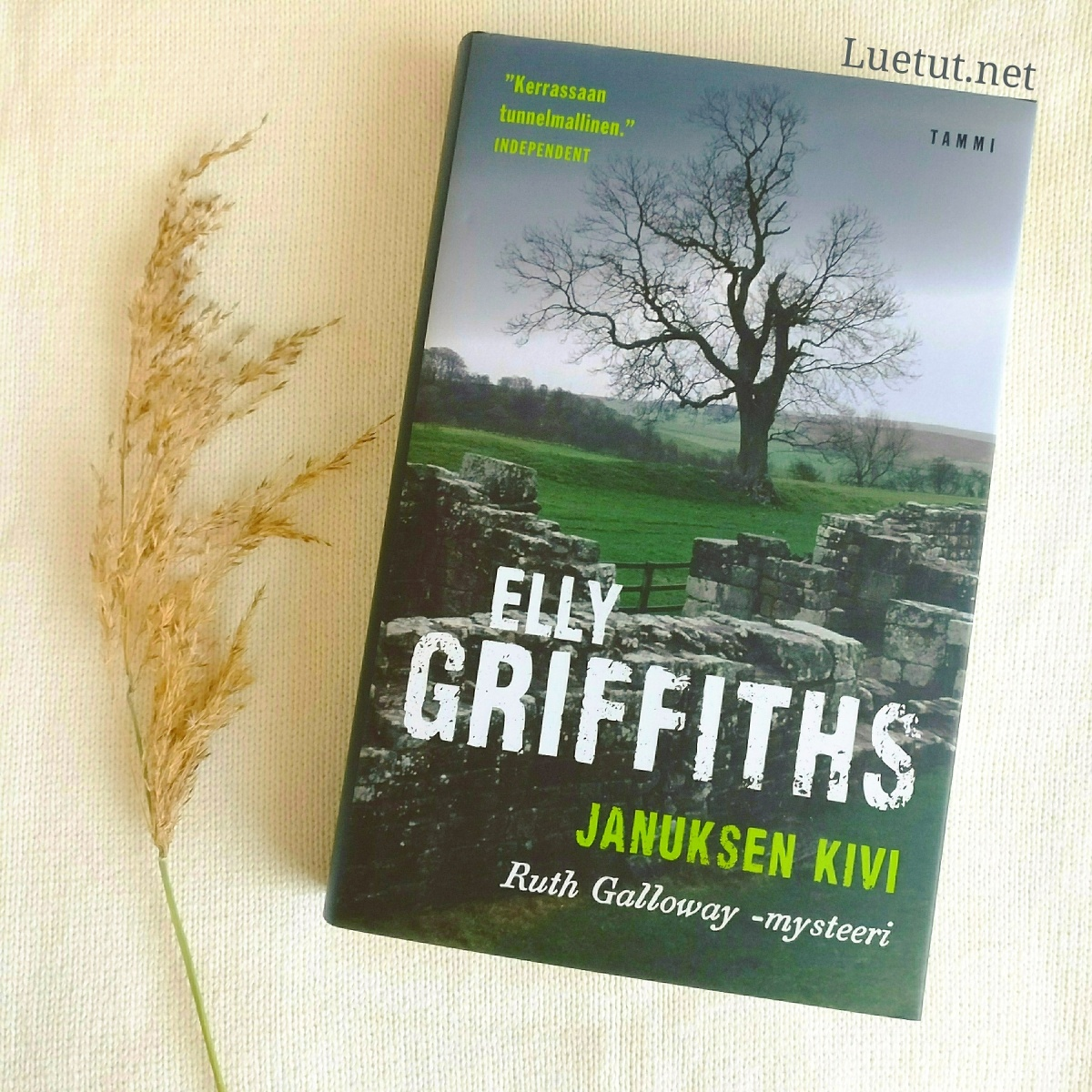 Elly Griffiths: Januksen kivi